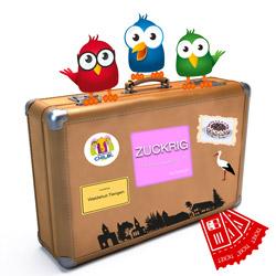 Koffer-waldshut-tiengen (2)