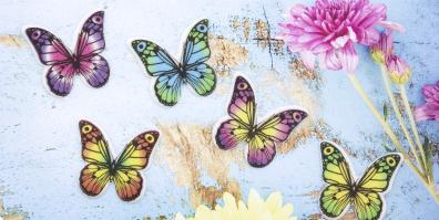 Persipan Dekormasse Dekoraufleger Schmetterlinge