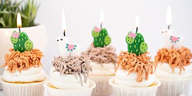 Geburtstagskerzen Lama Kaktus