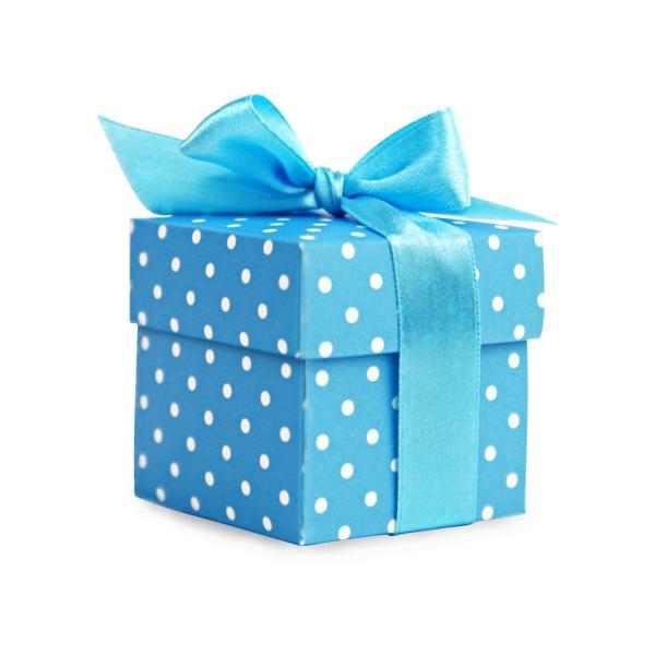 505 3 Blau partydeco Geschenktüten & Verpackungen 10 kleine Geschenkboxen, blauGeschenkbox-Gastgeschenk-Hochzeitsgeschenk-Geschenkband-Blau